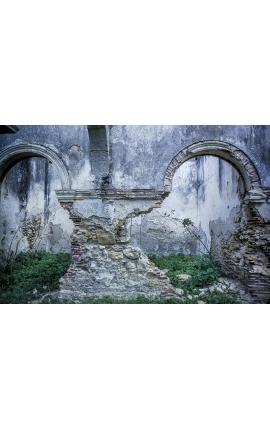 Ruins of Essaouira 13