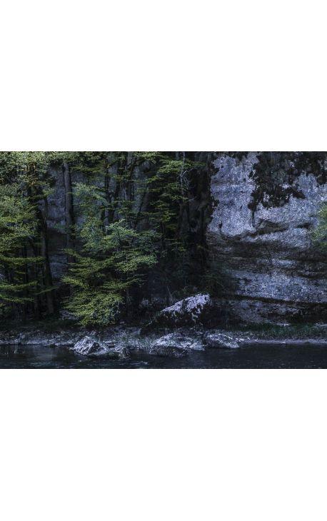 Notes de Printemps 13 - Photo d'art en édition limitée, tirage couleur grand format- Nature
