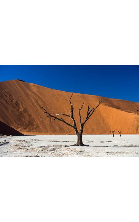 Sossusvlei 01 - Namibie - Edition limitée, tirage couleur grand format- Nature