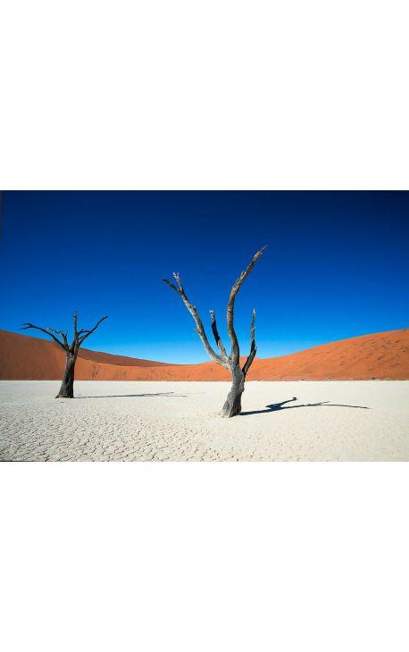Sossusvlei 02 - Namibie - Edition limitée, tirage couleur grand format- Nature