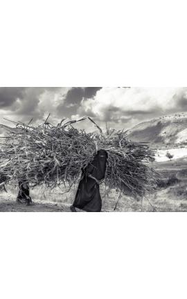 Fardeau d'une vie 02 - Photo d'art en Edition limitée, Ethiopie