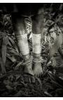 Omo Valley 10 - Achat photographie d'art