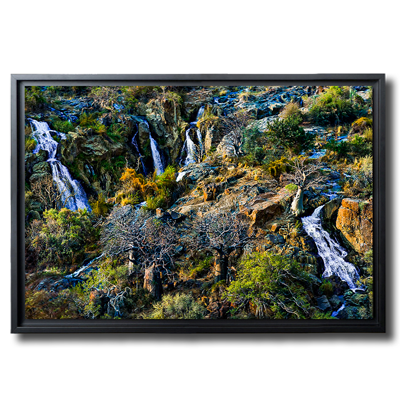 Photographie d'art - photo d'art en ligne artistique en noir et blanc - Landscape Nature